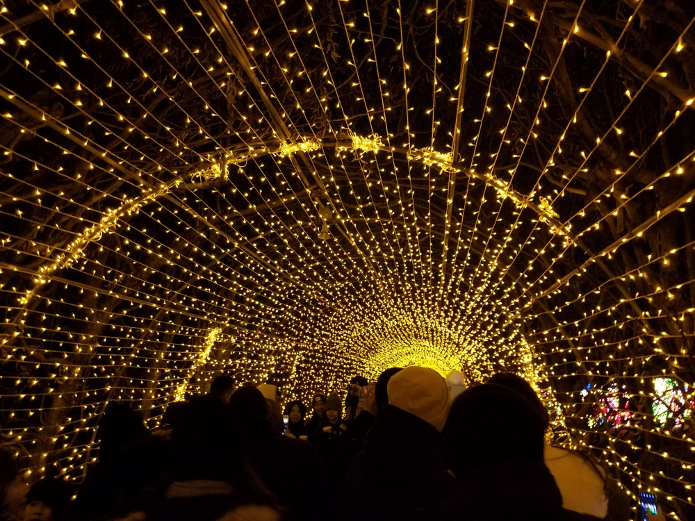 Lantern Festival Light Tunnel