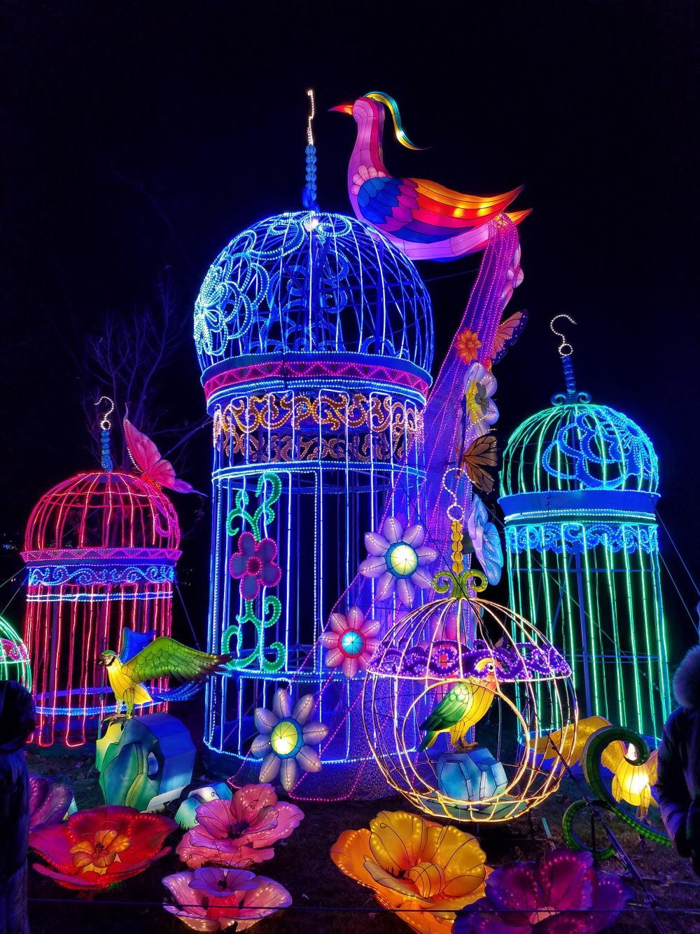 Lantern Festival Peacock Cages