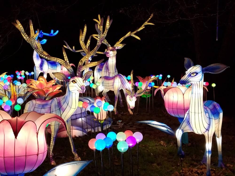 Lantern Festival Reindeer