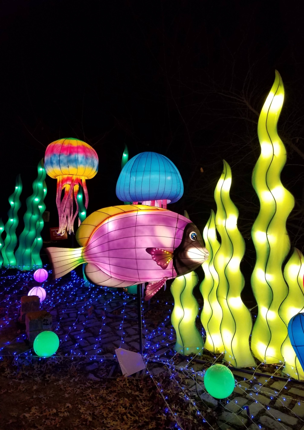 Lantern Festival Under the Sea