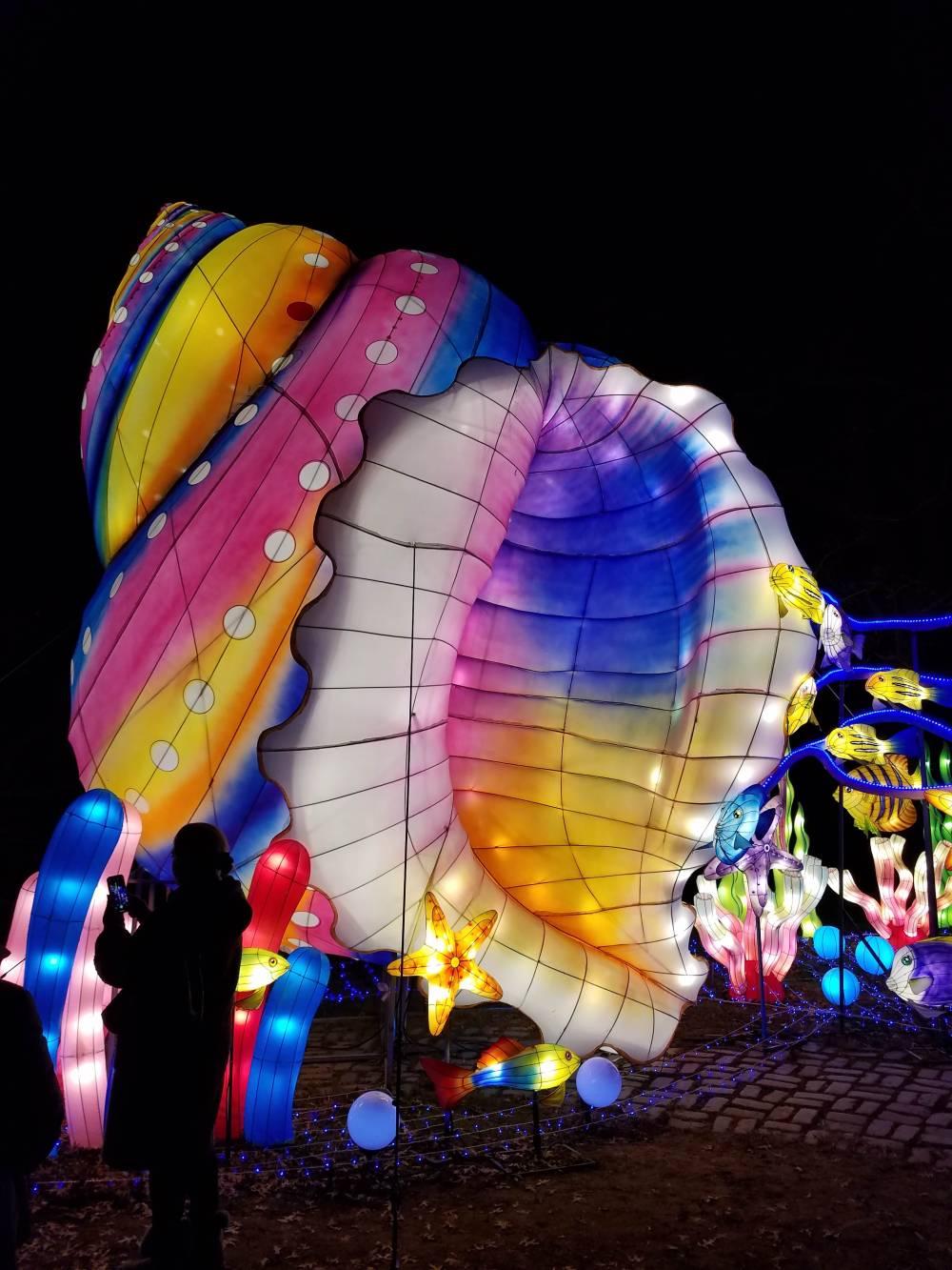Lantern Festival Seashell