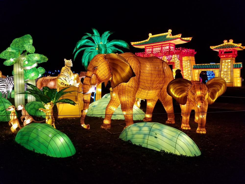 Lantern Festival Elephants and Meerkats