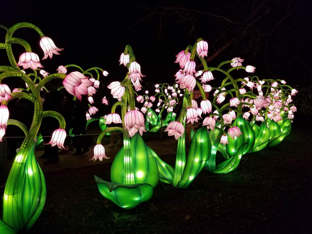 Lantern Festival Flower Tunnel