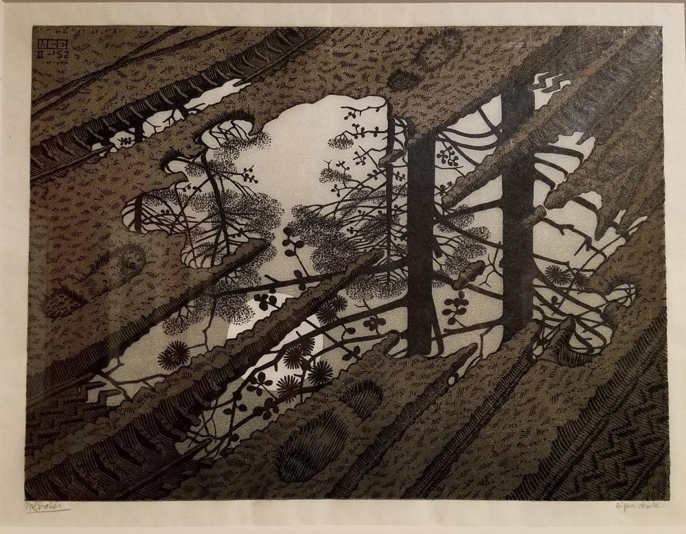 Escher Puddle