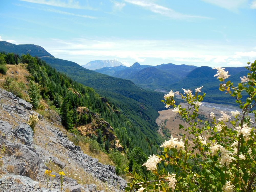 Mount St. Helens Pullout