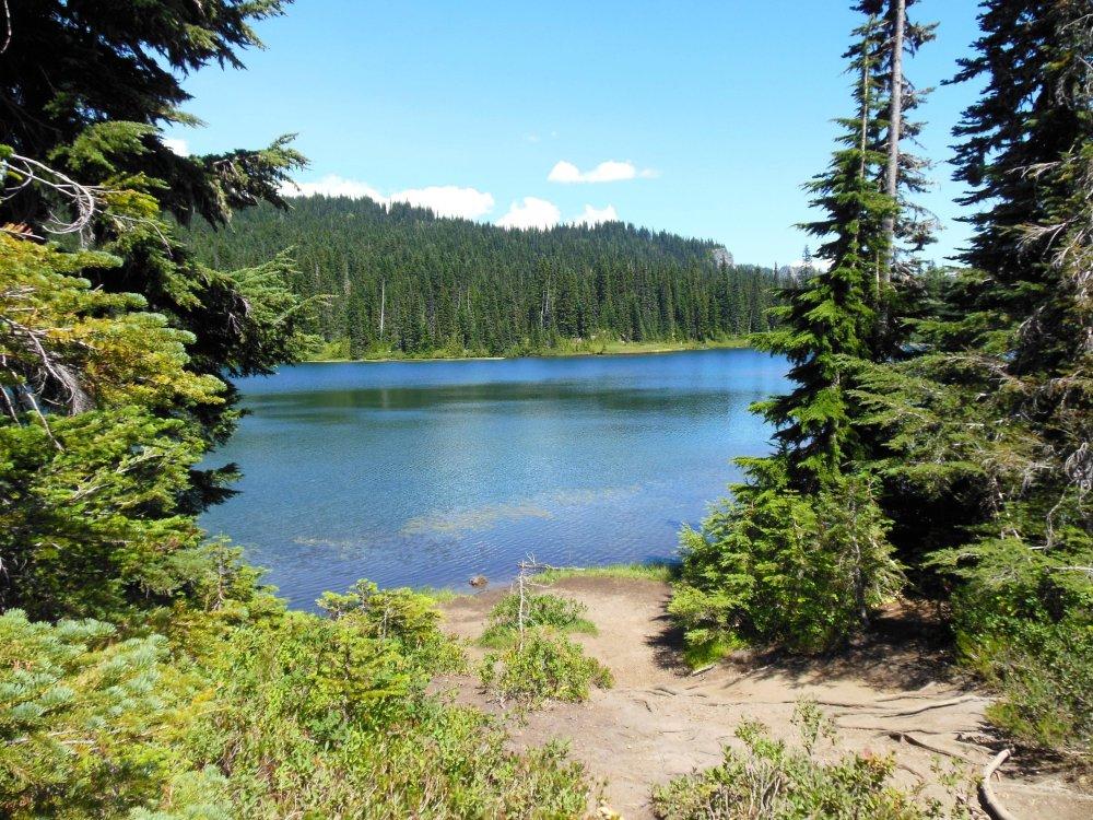 Mt Rainier Lake